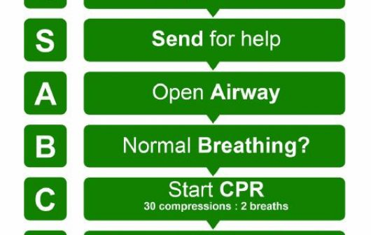 CPR Sign Guideline 8 Flowchart PCG News Update